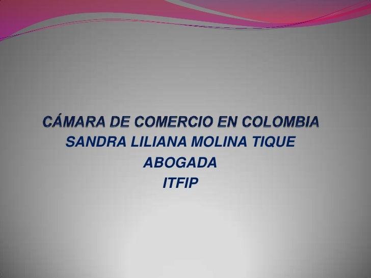 SANDRA LILIANA MOLINA TIQUE         ABOGADA            ITFIP