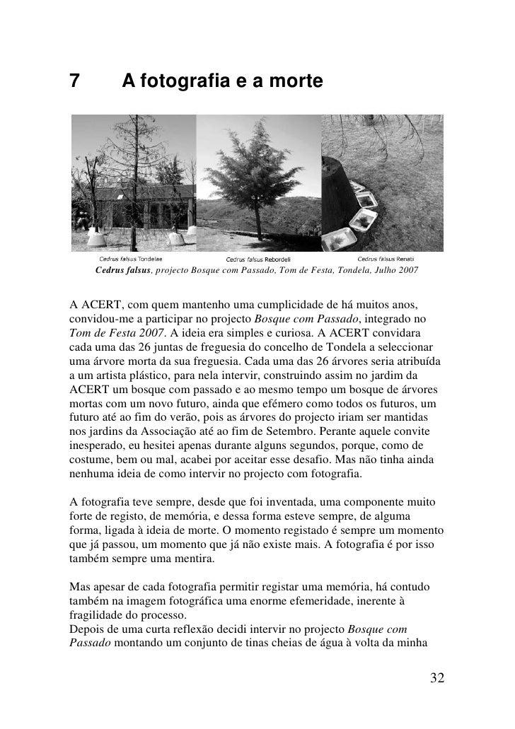 7          A fotografia e a morte     Cedrus falsus, projecto Bosque com Passado, Tom de Festa, Tondela, Julho 2007A ACERT...