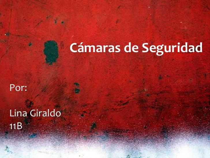 Cámaras de SeguridadPor:Lina Giraldo11B