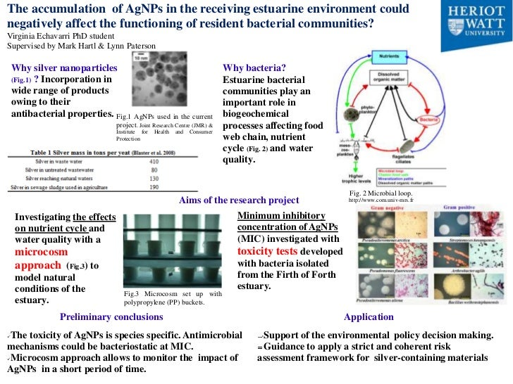 The accumulation of AgNPs in the receiving estuarine environment couldnegatively affect the functioning of resident bacter...
