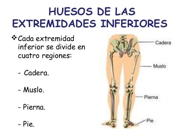 Los síntomas obliteriruyuschih de las enfermedades de las arterias de las extremidades inferiores