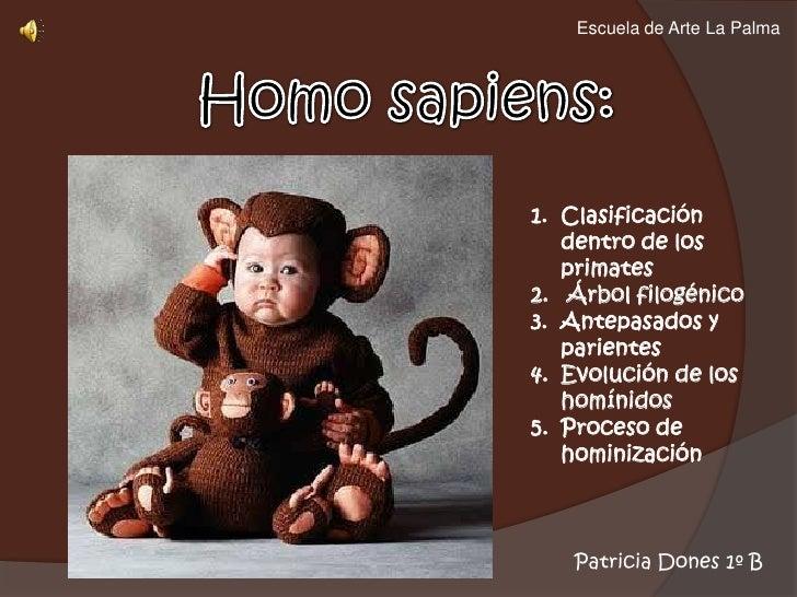Escuela de Arte La Palma<br />Homo sapiens:<br />Clasificación dentro de los primates<br /> Árbol filogénico<br />Antepasa...
