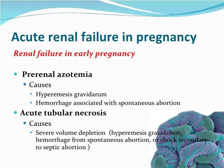 Pregnancy And Renal Disease