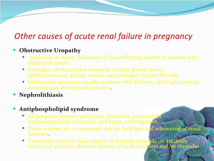 Pregnancy And Renal Disease