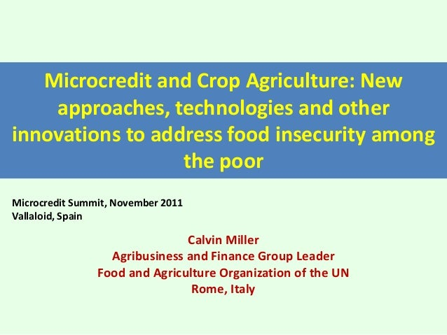 Microcredit and Crop Agriculture: New approaches, technologies and other innovations to address food insecurity among the ...
