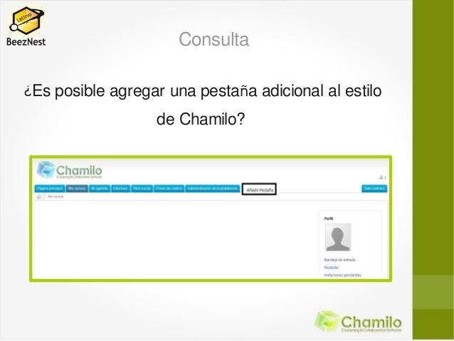Consulta¿Es posible agregar una pestaña adicional al estilo                   de Chamilo?