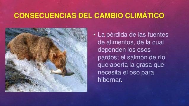 Cómo afecta el cambio climático a los mamíferos
