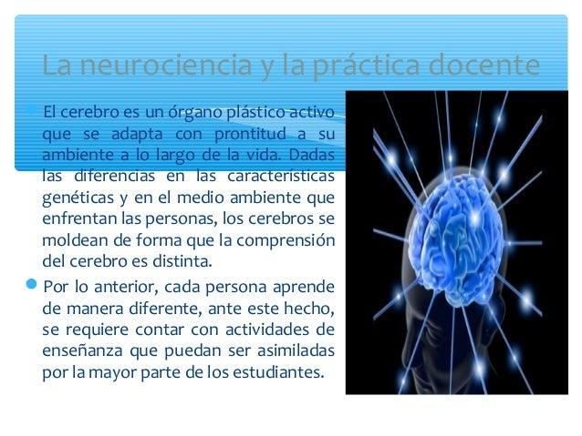 El cerebro es un órgano plástico activoque se adapta con prontitud a suambiente a lo largo de la vida. Dadaslas diferenci...