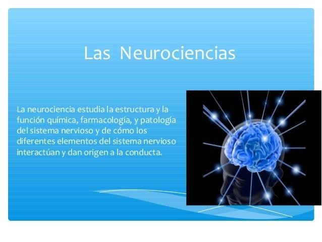 Las NeurocienciasLa neurociencia estudia la estructura y lafunción química, farmacología, y patologíadel sistema nervioso ...