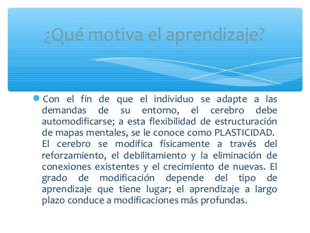 Con el fin de que el individuo se adapte a lasdemandas de su entorno, el cerebro debeautomodificarse; a esta flexibilidad...