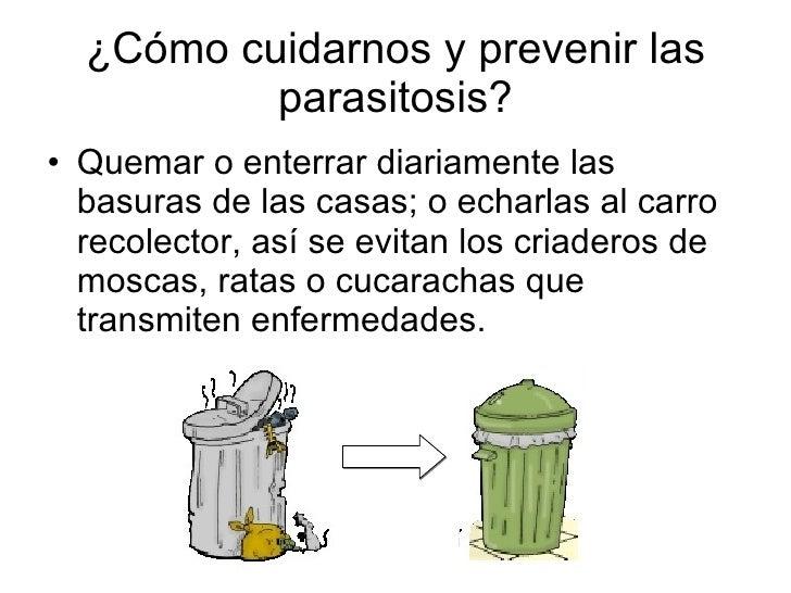 El preparado de los parásitos para krs