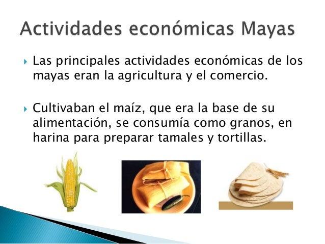 C mo era la sociedad y la econom a maya - Cual es la calefaccion mas economica ...