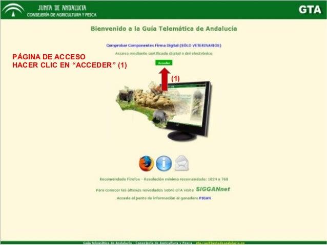 """PÁGINA DE ACCESO HACER CLIC EN """"ACCEDER"""" (1) (1)"""