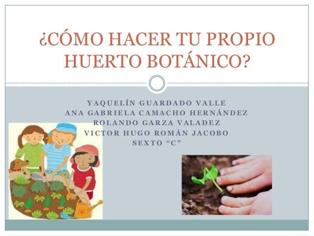 Como hacer tu propio huerto botanico for Como hacer tu propio astringente herbal
