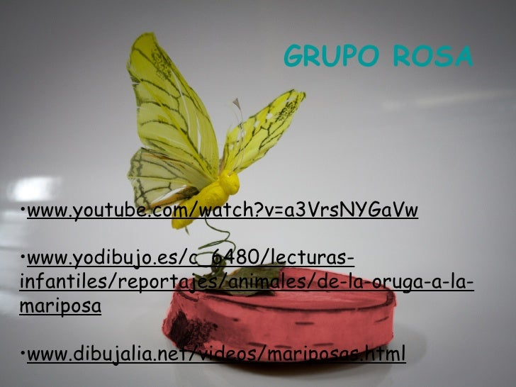 GRUPO ROSA•www.youtube.com/watch?v=a3VrsNYGaVw•www.yodibujo.es/c_6480/lecturas-infantiles/reportajes/animales/de-la-oruga-...