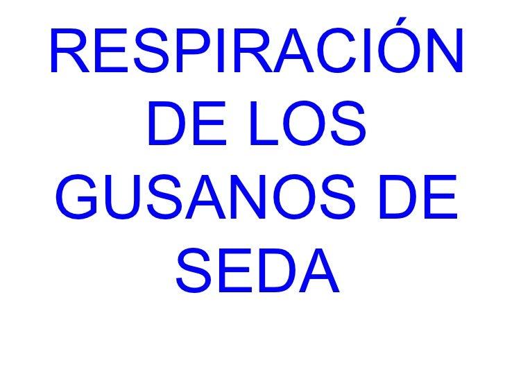 RESPIRACIÓN  DE LOSGUSANOS DE   SEDA