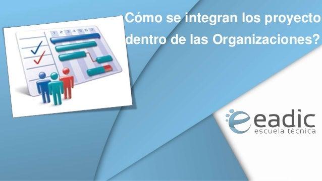 ¿Cómo se integran los proyectos  dentro de las Organizaciones?