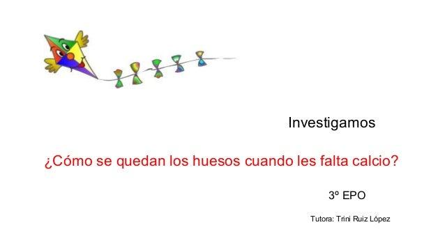 Investigamos ¿Cómo se quedan los huesos cuando les falta calcio? 3º EPO Tutora: Trini Ruiz López