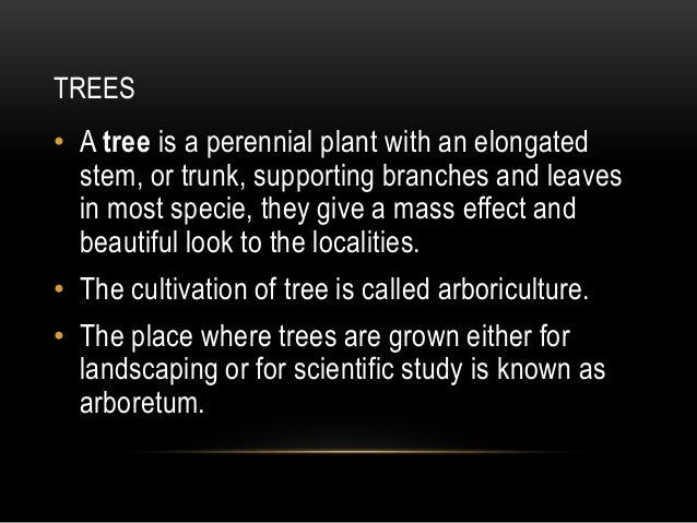 TREES • A tree is a perennial plant with an elongated stem, or trunk, supporting branches and leaves in most specie, they ...