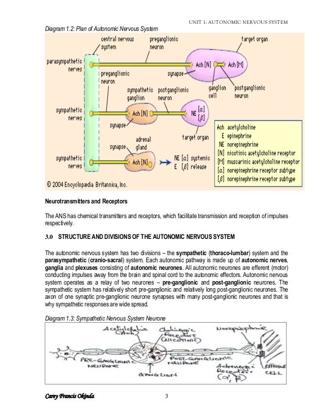 A description of the autonomic nervous system which is made up of ...