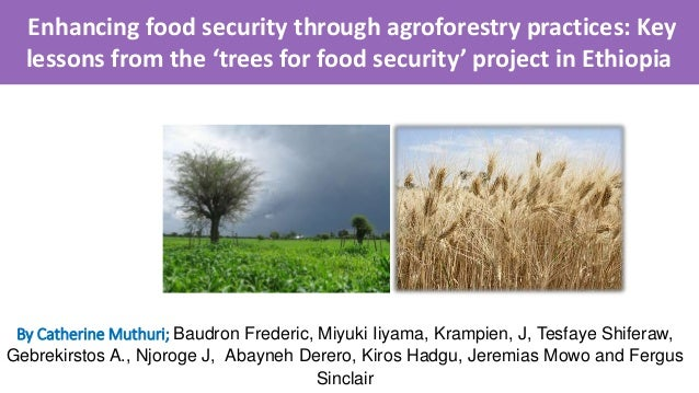 Enhancing food security through agroforestry practices ...