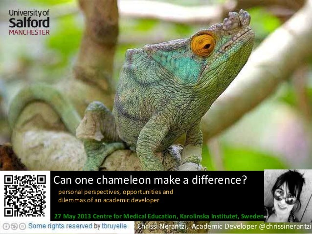 Can one chameleon make a difference?personal perspectives, opportunities anddilemmas of an academic developerChrissi Neran...