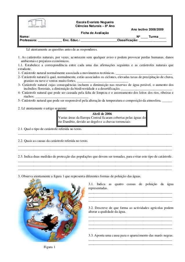 Escola Evaristo Nogueira Ciências Naturais – 8º Ano Ano lectivo 2008/2009 Ficha de Avaliação Nome: _______________________...