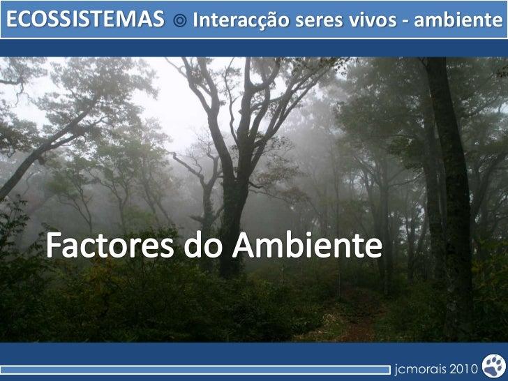 ECOSSISTEMAS   Interacção seres vivos - ambiente                                    jcmorais 2010