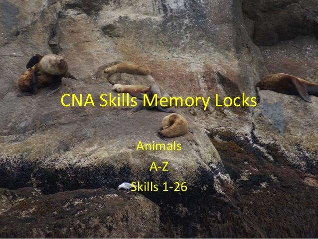 CNA Skills Memory Locks Animals A-Z Skills 1-26