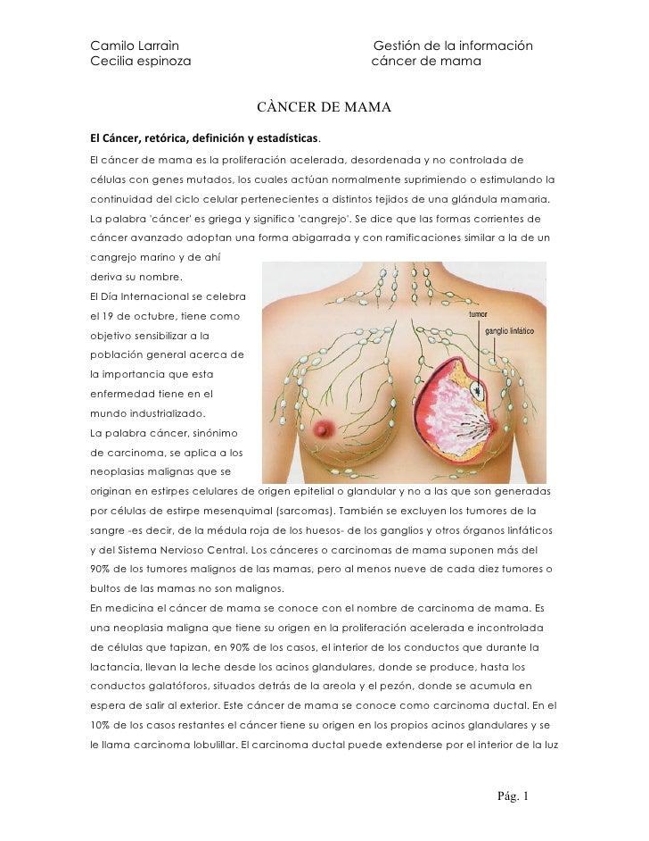 Camilo Larraìn                                          Gestión de la información Cecilia espinoza                        ...