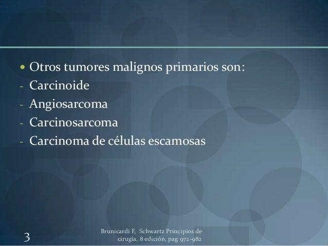 Cáncer de estomago Slide 3