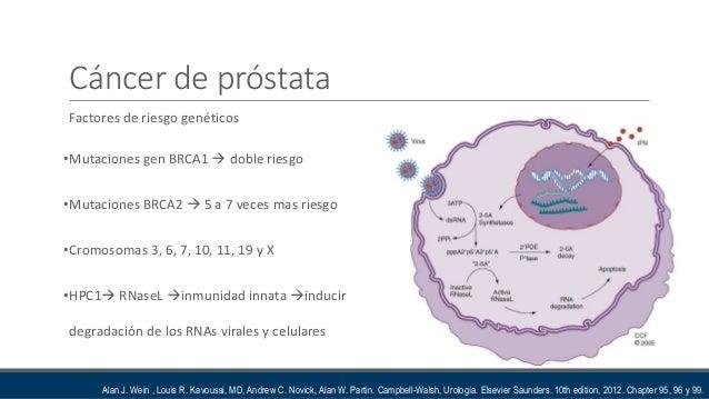 Etiologia cancer prostata