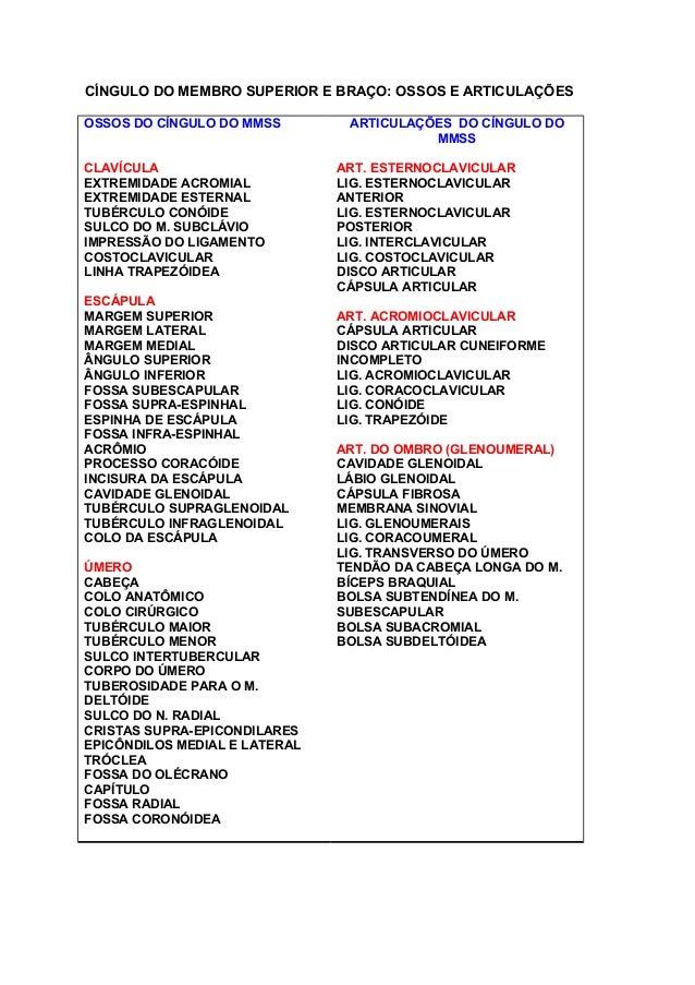 CÍNGULO DO MEMBRO SUPERIOR E BRAÇO: OSSOS E ARTICULAÇÕES OSSOS DO CÍNGULO DO MMSS CLAVÍCULA EXTREMIDADE ACROMIAL EXTREMIDA...