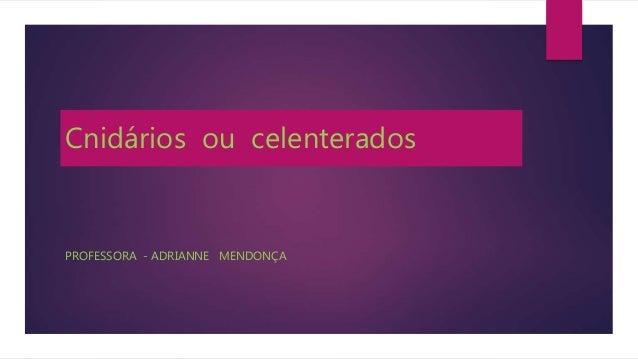 Cnidários ou celenterados PROFESSORA - ADRIANNE MENDONÇA