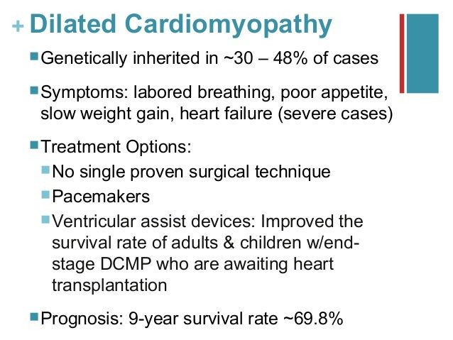 Case Study: Dilated Cardiomyopathy - GeneDx
