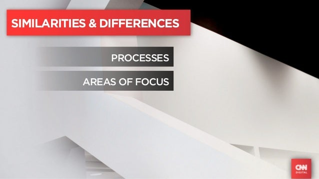 SIMILARITIES & DIFFERENCES               PROCESSES           AREAS OF FOCUS