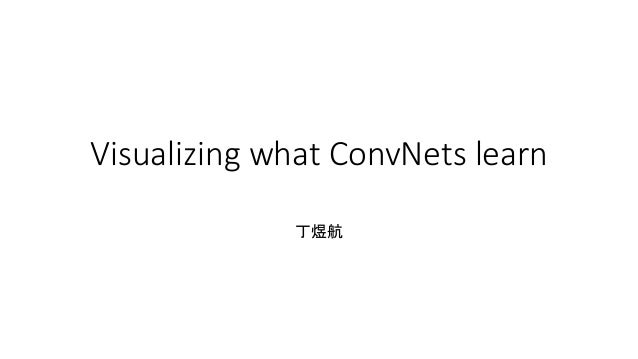 Visualizing what ConvNets learn 丁煜航