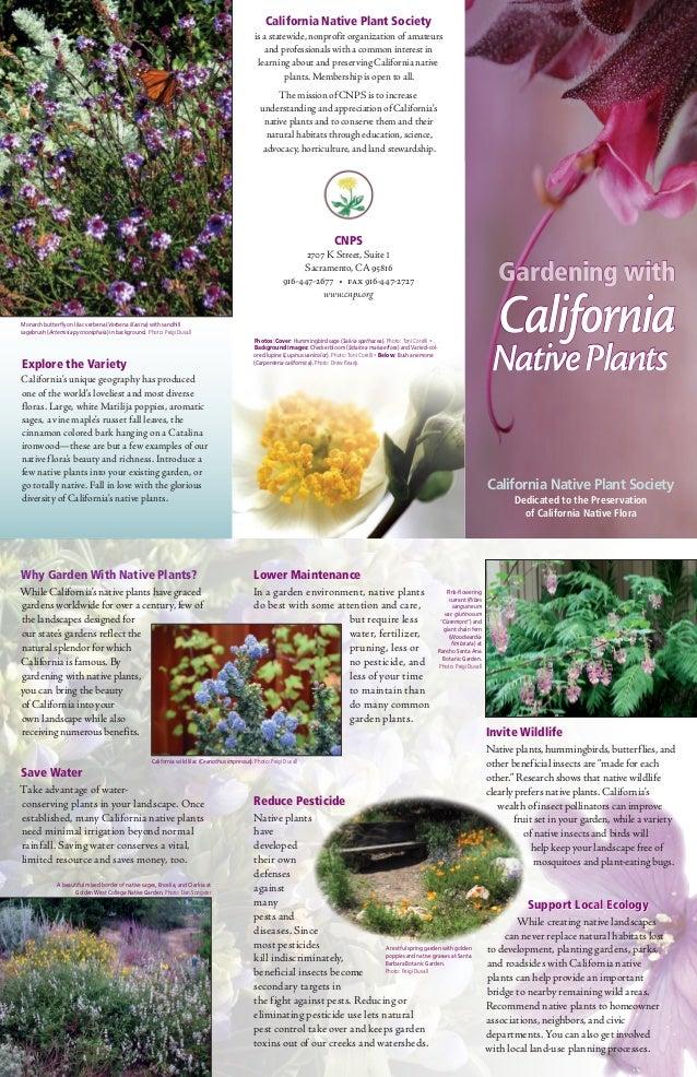 California Native Plant Society                                                                                           ...