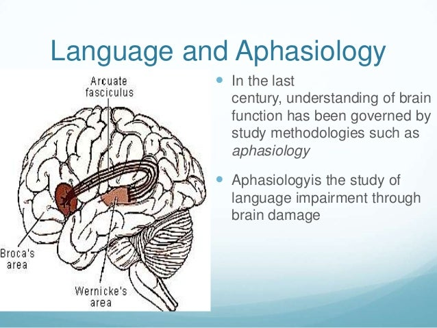 Language and Aphasiology            In the last             century, understanding of brain             function has been...