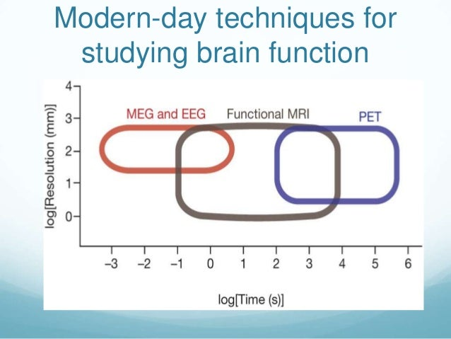 Modern-day techniques for studying brain function