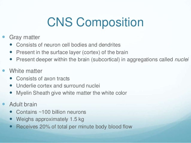 CNS Composition Gray matter   Consists of neuron cell bodies and dendrites   Present in the surface layer (cortex) of t...
