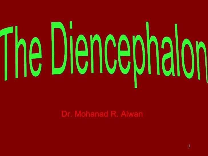 <ul><li>Dr. Mohanad R. Alwan </li></ul>