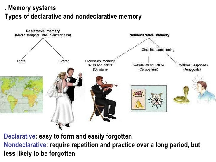 online Epitope Recognition Since Landsteiner's Discovery: 100 Years Since the Discovery of Human