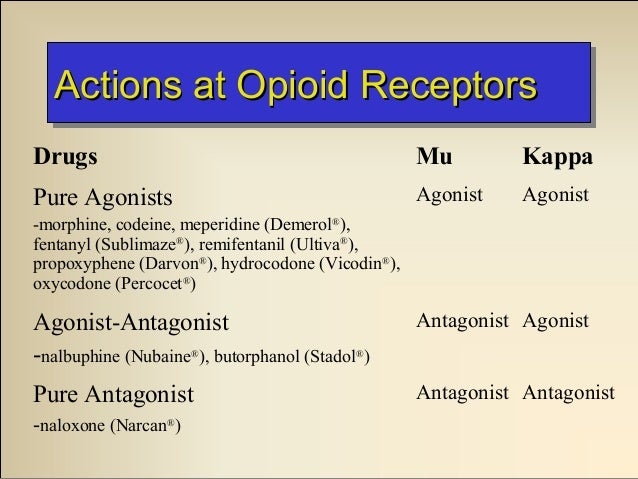 kappa agonists in management of pain and opioid addiction Start studying ipap pharm ii test 3: pain management part ii (opioids) opioid addiction management of pain through binding of opioid receptors in the.