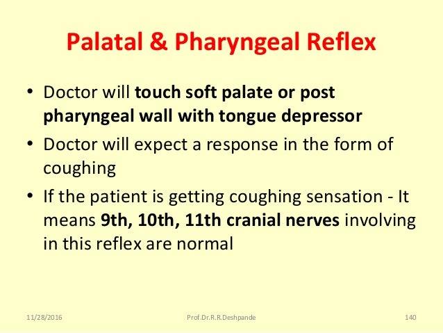 Palatal & Pharyngeal Reflex • Doctorwilltouch soft palate or post pharyngeal wall with tongue depressor • Doctorwillex...