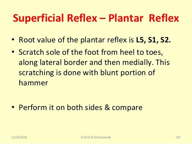 Superficial Reflex – Plantar Reflex • RootvalueoftheplantarreflexisL5, S1, S2. • Scratchsoleofthefootfromheel...