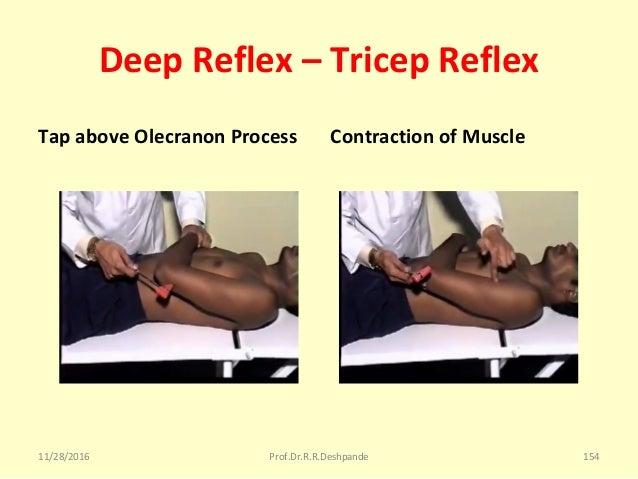 Deep Reflex – Tricep Reflex Tap above Olecranon Process Contraction of Muscle 11/28/2016 Prof.Dr.R.R.Deshpande 154