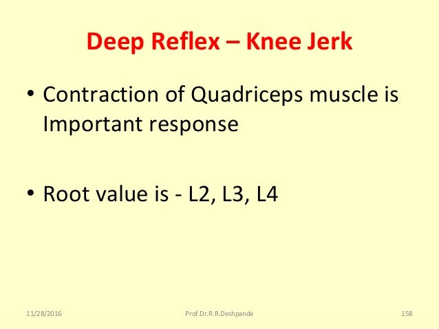 Deep Reflex – Knee Jerk • ContractionofQuadricepsmuscleis Importantresponse • Rootvalueis-L2,L3,L4 11/28/2016 ...