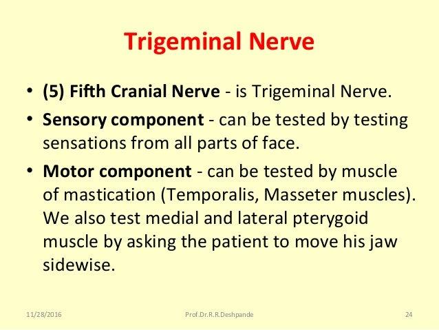 Trigeminal Nerve • (5) Fifth Cranial Nerve -isTrigeminalNerve. • Sensory component -canbetestedbytesting sensatio...