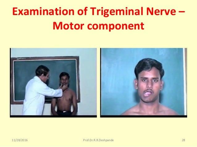 Examination of Trigeminal Nerve – Motor component 11/28/2016 Prof.Dr.R.R.Deshpande 28